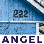 Angel Number 222 - Meaning and Symbolism - Pin